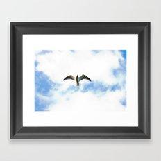 Seagull in Flight Framed Art Print