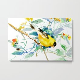 American Goldfinch, yellow sage green birds and flowers Metal Print