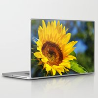sunflower Laptop & iPad Skins featuring Sunflower by Christina Rollo