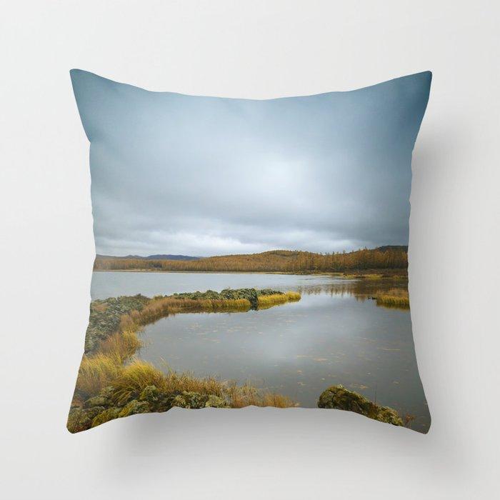 Undisturbed Throw Pillow