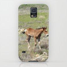 Horses Galaxy S5 Slim Case