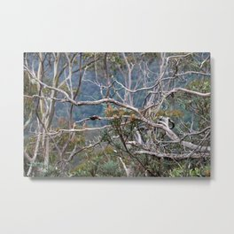 Australiana No. 2 Metal Print