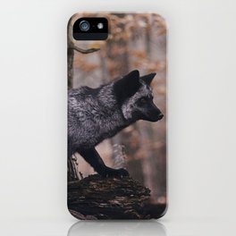 Silver Fox iPhone Case