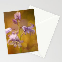 There were lots of them.... this time in bokeh bubbles Stationery Cards