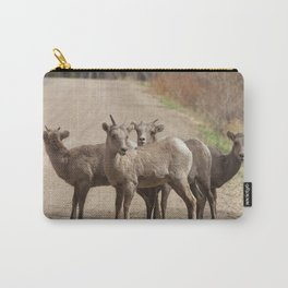 Which Way! Carry-All Pouch