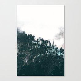 Symphonies of light Canvas Print