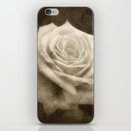 Pink Roses in Anzures 4 Antiqued iPhone Skin