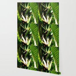 """""""Wild Bananas"""" by ICA PAVON Wallpaper"""