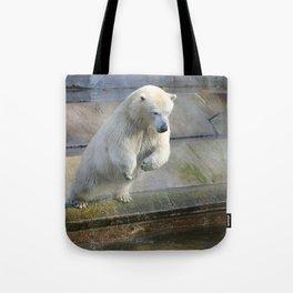 Polar_Bear_2015_0301 Tote Bag