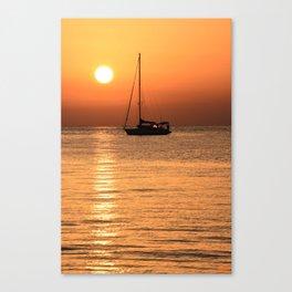 alba Canvas Print