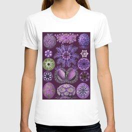 Ernst Haeckel Ascidiae Sea Squirts in Purple T-shirt