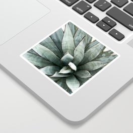Botanical Succulents // Dusty Blue Green Desert Cactus High Quality Photograph Sticker