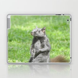 Squirrely Intentions Laptop & iPad Skin