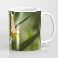 trout Mugs featuring Trout Lily Flowers by Christina Rollo