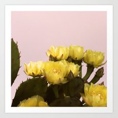 Prickly Pear #1 Art Print