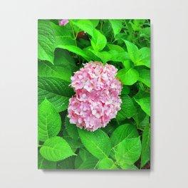 Pink Lilac Among Greenery Metal Print