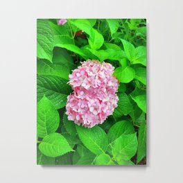 Pink Lilac Among Greenery Metal Print