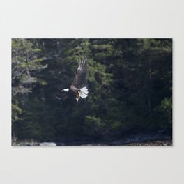 Eagle Fishing Canvas Print