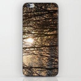 Iowa Winter Sun iPhone Skin