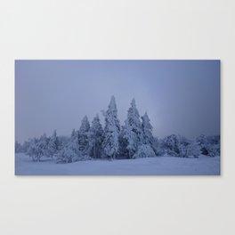 pines & snow Canvas Print