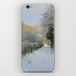 Winter Walkway iPhone Skin