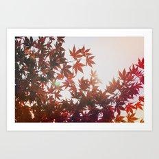 Fire Leaves Art Print
