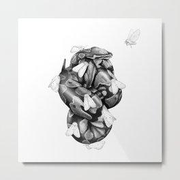 Ball Python I Metal Print