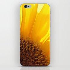 Sunflower 794 iPhone & iPod Skin