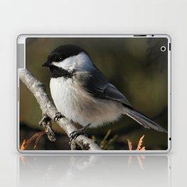 Cedar Singer Laptop & iPad Skin