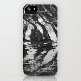 Meadows near Gouda, the Netherlands iPhone Case