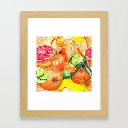 Pattern with citruses Framed Art Print
