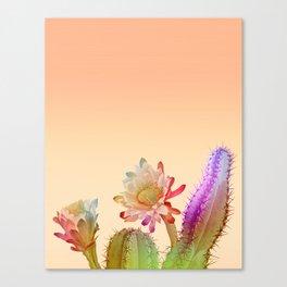 Peach Cactus Canvas Print