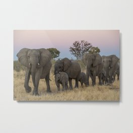 To the Watering Hole Metal Print