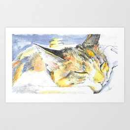 Sleeping Ohko Art Print