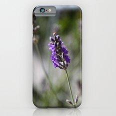 lavendar Slim Case iPhone 6s
