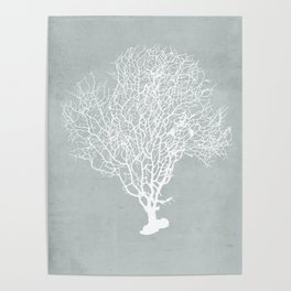 White Coral Poster