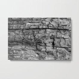 Textured Timber Metal Print