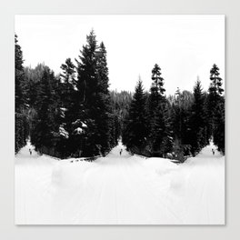 Frozen InDecision Canvas Print