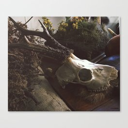 WitchCaft Canvas Print