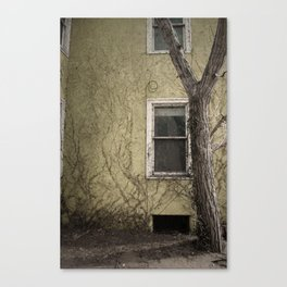 MEMORY OF THE VINES Canvas Print