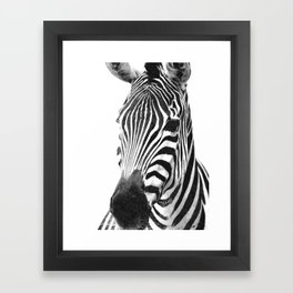 Black and white zebra illustration Framed Art Print