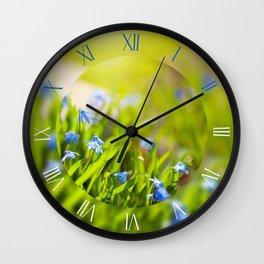 Scilla siberica blue flowerets Wall Clock