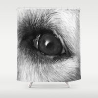 golden retriever Shower Curtains featuring Golden retriever eye by Isabelle Savard-Filteau