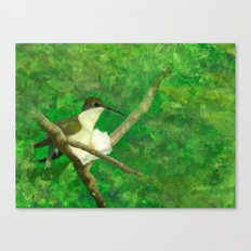 resting wings Canvas Print