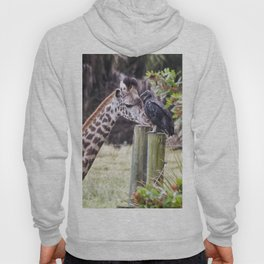 An Unlikely Couple Hoody