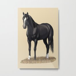 Beautiful Black Stallion Quarter Horse Metal Print