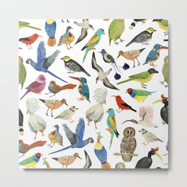 Endangered Birds Around the World Metal Print