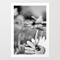The flower and the bug Art Print