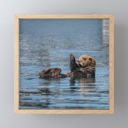 Sea Otter I - Kachemak Bay, Alaska Framed Mini Art Print