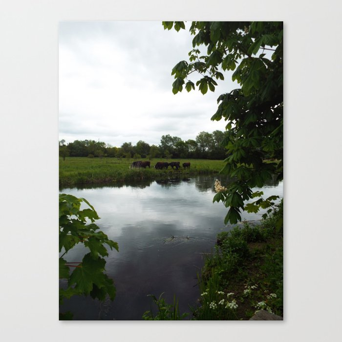 The River Itchen Canvas Print
